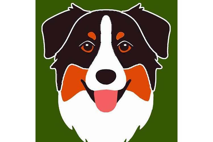 Logo Pawsitive
